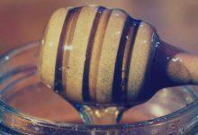 Photo of น้ำผึ้งเดือน 5 สมุนไพรตามฤดูกาล