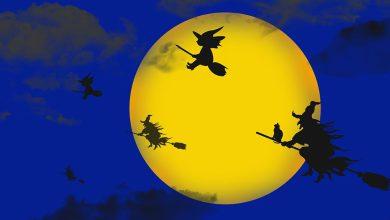 ฮาโลวีน Halloween