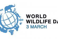 Photo of 3 มีนาคม วันสัตว์ป่าและพืชป่าโลก World Wildlife Day