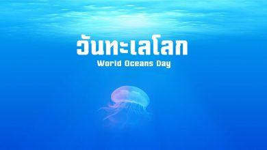 Photo of วันทะเลโลก หรือ วันมหาสมุทรโลก 2562 8 มิถุนายน
