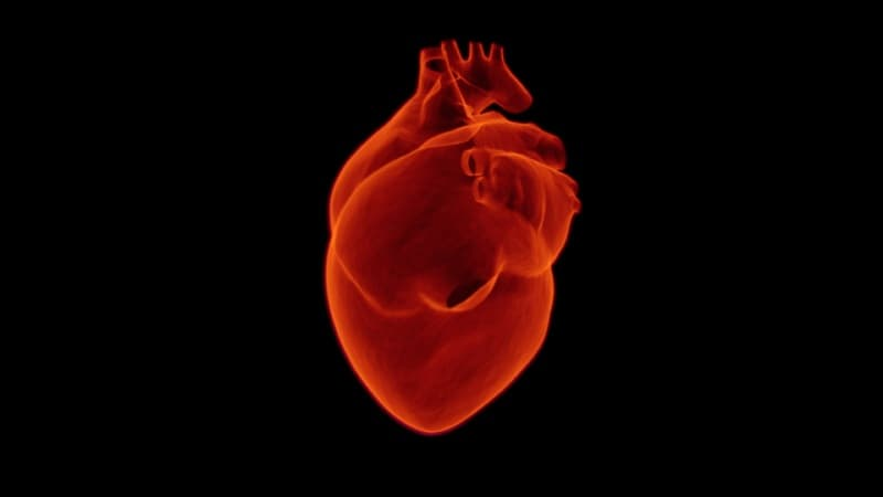 ชนิดของโรคหัวใจ