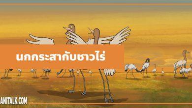 Photo of นิทานอีสป : นกกระสากับชาวไร่ (The Farmer & the Stork)
