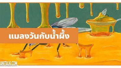 นิทานอีสป : แมลงวันกับโถน้ำผึ้ง (The Flies & the Honey)