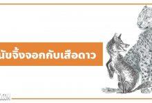 Photo of นิทานอีสป : สุนัขจิ้งจอกกับเสือดาว (The Fox & the Leopard)