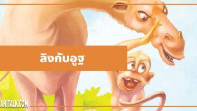 นิทานอีสป : ลิงกับอูฐ (The Monkey & the Camel)