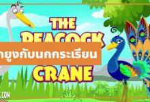 Photo of นิทานอีสป : นกยูงกับนกกระเรียน (The Peacock & the Crane)