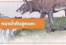 นิทานอีสป : หมาป่ากับลูกแกะ (The Wolf & the Lamb)