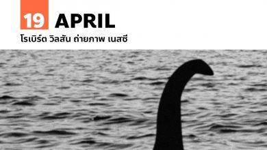 19 เมษายน โรเบิร์ต วิลสัน ถ่ายภาพ เนสซี