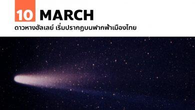 Photo of 10 มีนาคม ดาวหางฮัลเลย์ เริ่มปรากฏบนฟากฟ้าเมืองไทย
