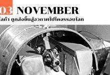 3 พฤศจิกายน ไลก้า ถูกส่งขึ้นสู่อวกาศไปโคจรรอบโลก