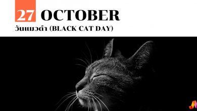 Photo of 27 ตุลาคม วันแมวดำ (Black Cat Day)