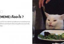 มีม (Meme) คืออะไร ?