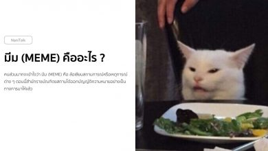 Photo of มีม (Meme) คืออะไร ?